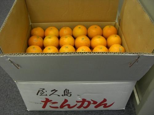 CIMG1689.JPG